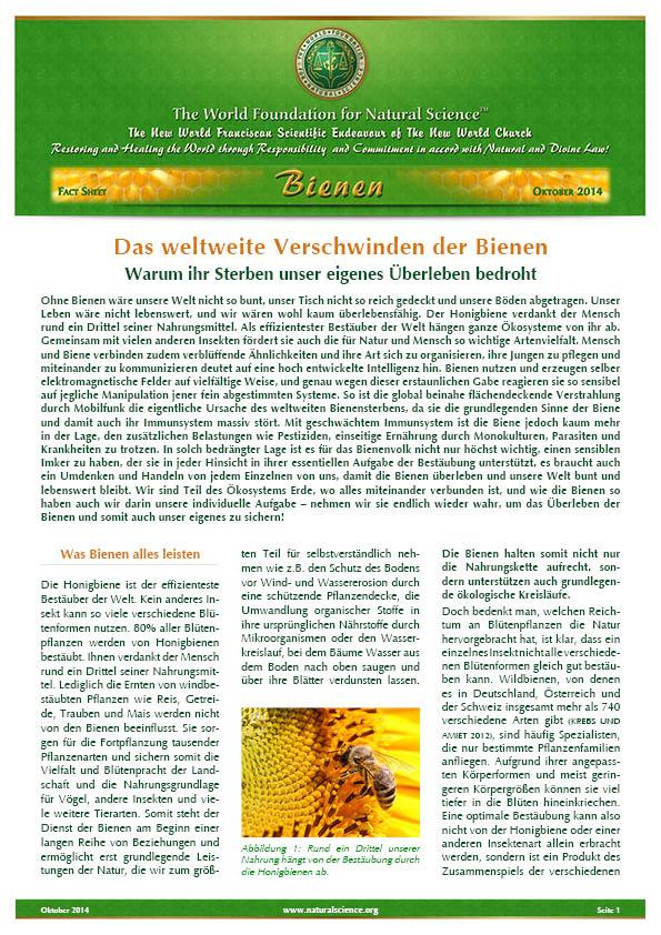 Titelblatt der Publikation : Das weltweite Verschwinden der Bienen