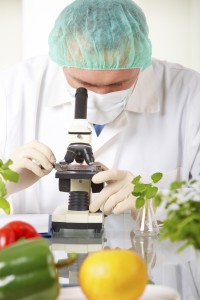 Les légumes sortant des laboratoires