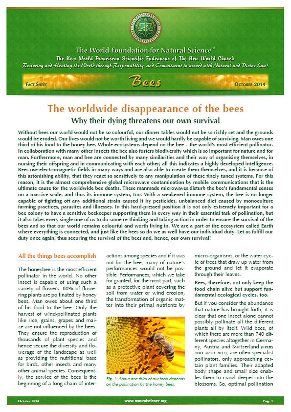Cover of publication : The worldwide disappearance of the bees