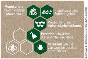 Bienen_Infografik2