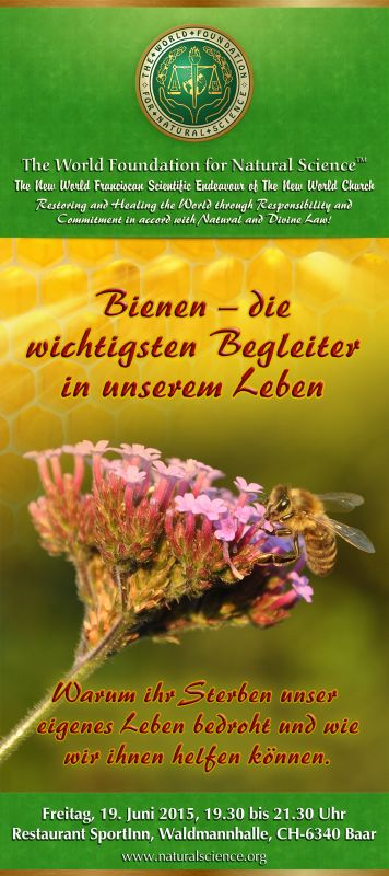 Bienen - die wichtigsten Begleiter in unserem Leben - The ...