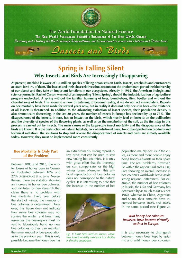 Cover of publication : Spring is Falling Silent – Why Insects and Birds Are Increasingly Disappearing