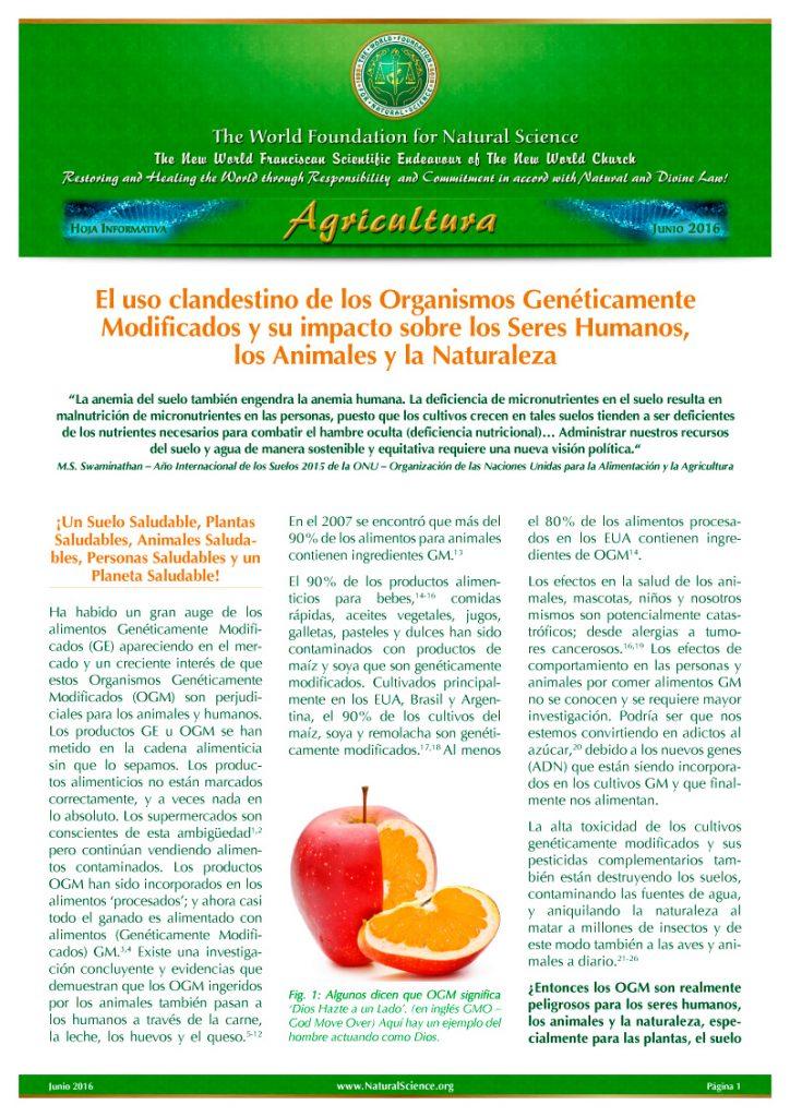 Portada de la publicación: El uso clandestino de los Organismos Genéticamente Modificados y su impacto sobre los Seres Humanos, los Animales y la Naturaleza